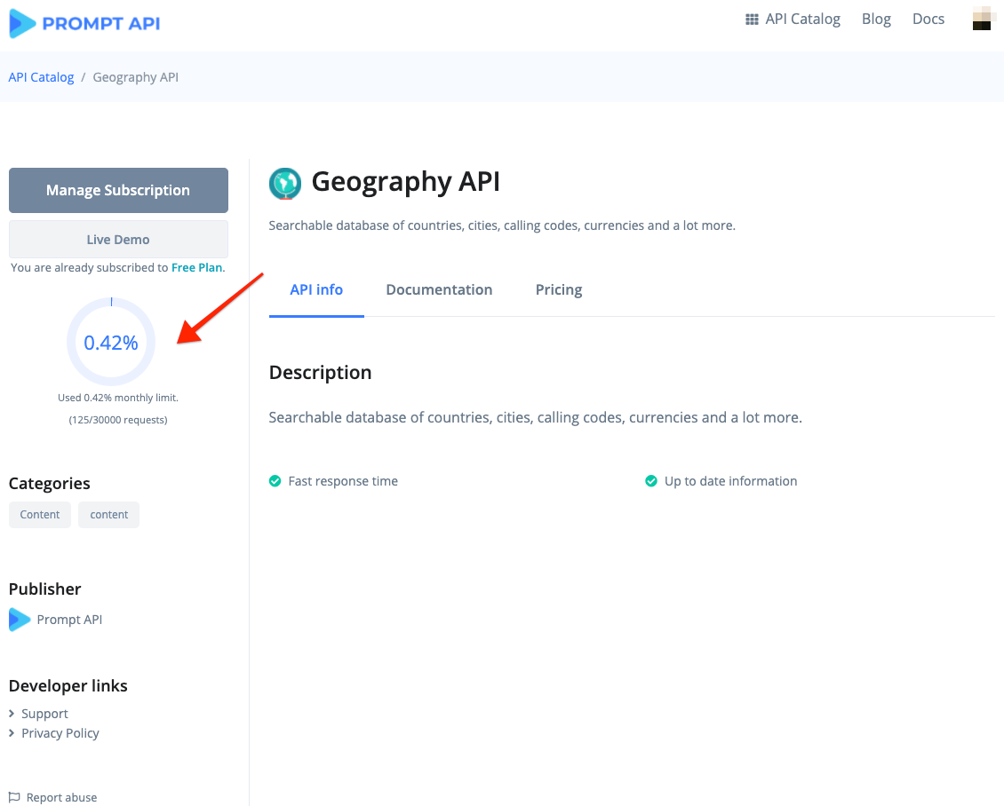 API Detail Page